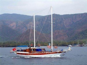 Denizgulu 96